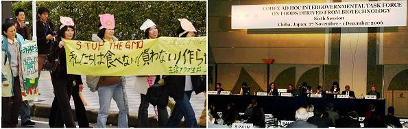 gmo-protest-codex-task-force-meeting-japan1
