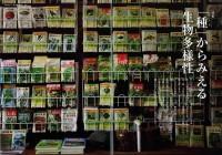 noguchi-seed-shop