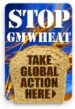 stop-GM-wheat